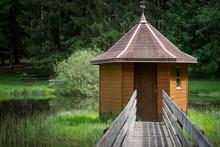 Einsamer Teich Im Wald