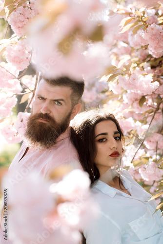 Cherry Blossom dating Iscriviti Top 20 migliori siti di incontri in USA