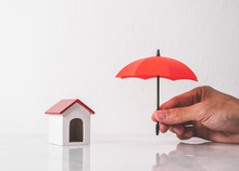 Umbrella And Toy House For Pro...