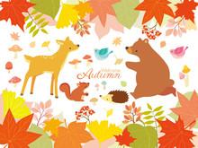 Autumn Nature And Animal Illustrations