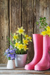 rubber boots and spring flowers on wooden background