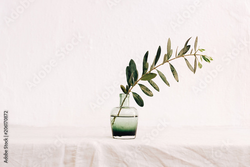 Fotografía  Olive  brunch in green stylish vase at  linen tablecloth Minimalistic decorated