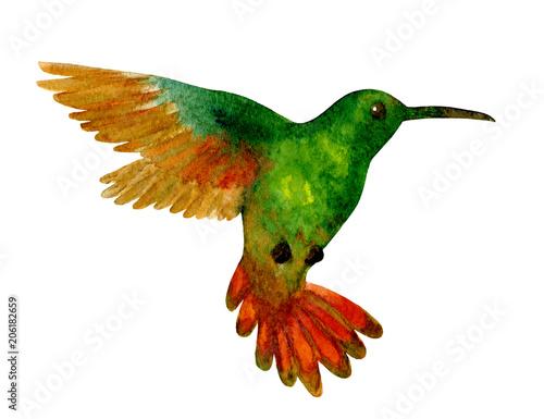 zielony-koliber-w-locie