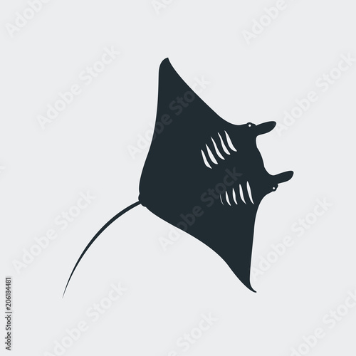 Fotografía  Icono plano silueta manta raya en fondo gris