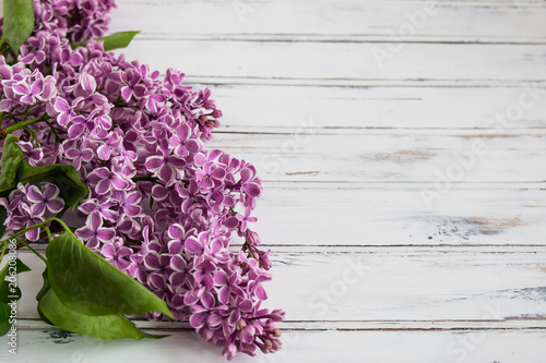 Foto op Canvas Lilac Flowers of lilac.White old background with space for text.Purple color.