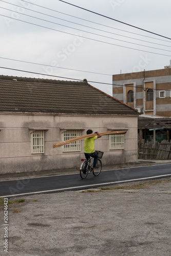 Fotografie, Obraz  A worker on a bicycle in carrying a large selection of bamboo poles