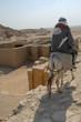 Homme à dos d'âne en Egypte