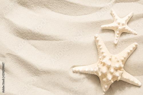 Starfish on the light sea sand Wallpaper Mural