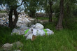 Ecology of Ukraine. Nature near Ukrainian capital.Environmental contamination. Illegal junk dump.