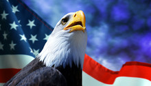 Bald Eagle And American Flag W...