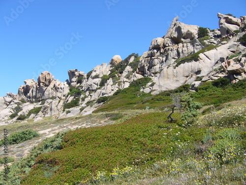 Papiers peints Cappuccino Granite rocks with mediterranean vegetation, Moon's Valley, Capo Testa, Santa Teresa Gallura, Italy