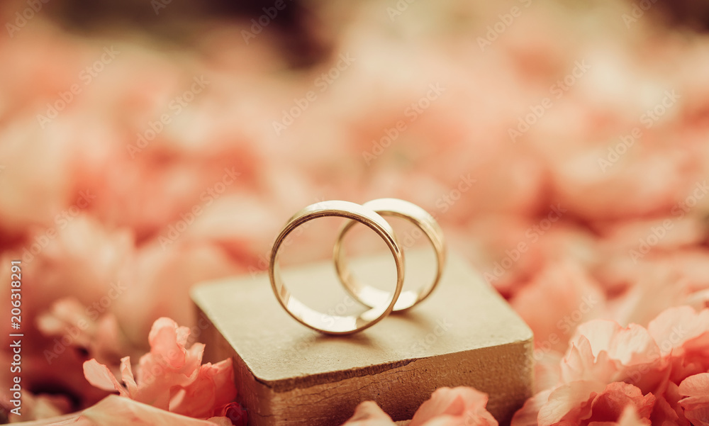 Fototapety, obrazy: Rings