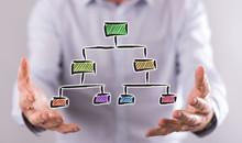Concept Of Organizational Chart