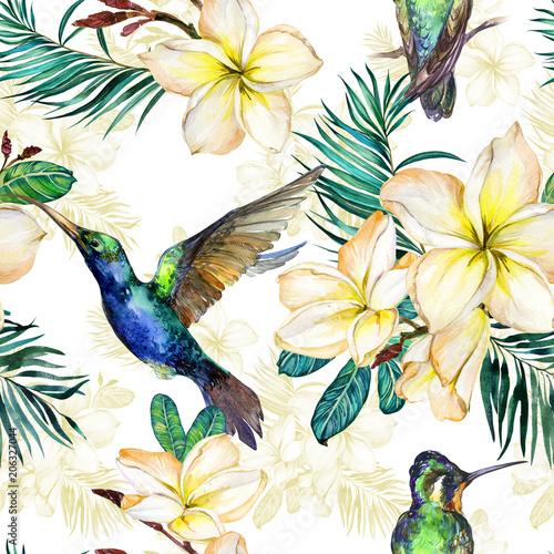 piekny-colibri-zolci-plumeria-kwiaty-i-palma-liscie-na-bialym-tle-egzotyczny-tropikalny-wzor-malarstwo-watecolor