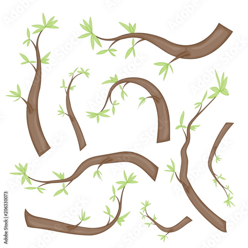 Photo Stands Kids set of stylized branches with leaves. isolated on white background in vector. collection of leaves, twigs, shoots in a cartoon style