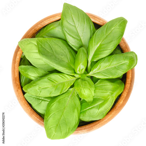 Poster Condiments Fresh green basil leaves in wooden bowl. Also great basil or Saint-Joseph's-wort. Ocimum basilicum. Culinary herb. Edible, raw and organic. Isolated macro food photo closeup from above over white.