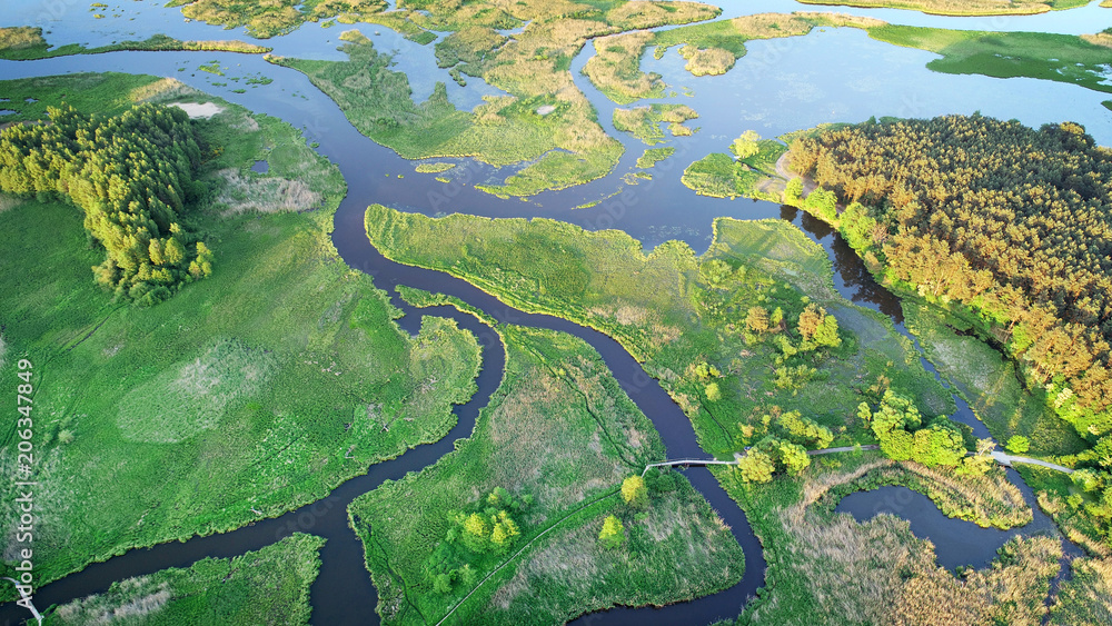 Fototapety, obrazy: Aerial view of natural river in spring