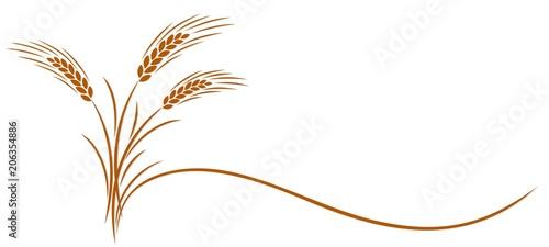 Fotografía Wheat ear symbol.