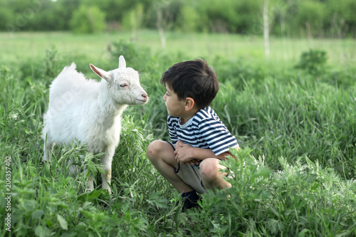 Fotografía A boy is standing with a goat on the field on a sunny day.