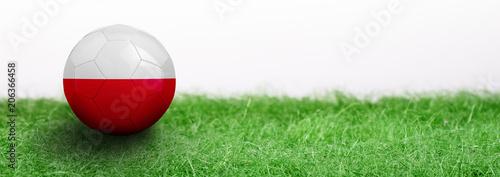 Plakat Panoramiczna zielona trawa i oznaczone piłki nożnej