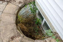 View Looking Down Into A Neglected Egress Window