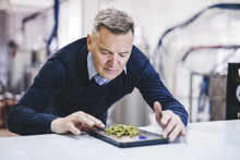 Brewer Weighing Dried Hops On Machinery At Microbrewery