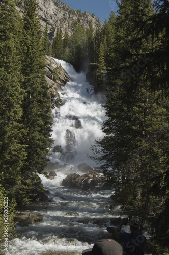 Keuken foto achterwand Watervallen Scenic view of waterfall amidst trees at Grand Teton National Park