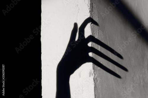 Strange Shadow On The Wall Canvas Print