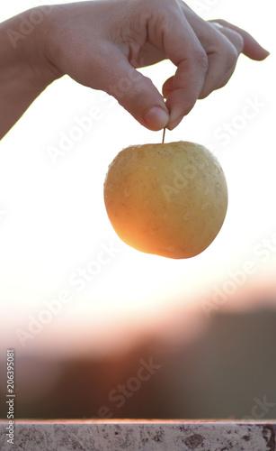 Donna con una mela in mano Canvas-taulu