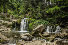 Green Forest Mountain Landscap...
