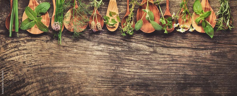 Fototapety, obrazy: Herbs