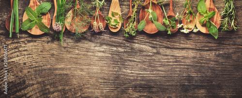 Foto auf Gartenposter Aromastoffe Herbs