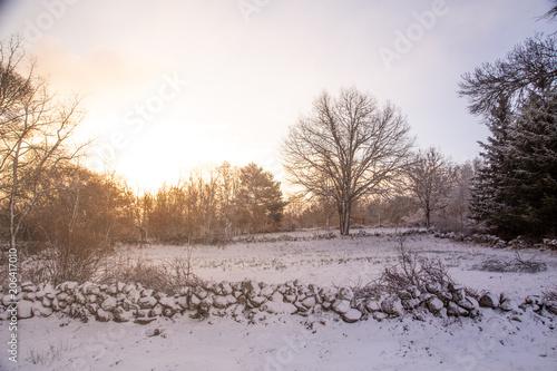 Poster Cappuccino Snowy landscape in Soria Spain