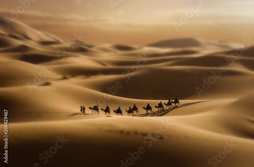 Keuken foto achterwand Kameel Moroccan Dunes #1, 2008