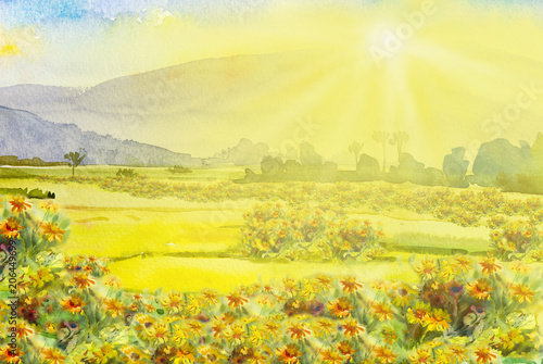 Fotobehang Zwavel geel Painting colorful of daisy wildflower and colorful in the sun morning