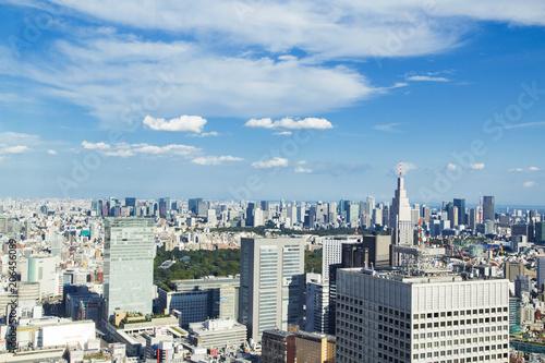 Foto op Plexiglas Japan Cityscape of Shinjuku Metropolitan Government Lookout,Tokyo