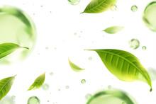 Flying Green Tea Leaves Backgr...