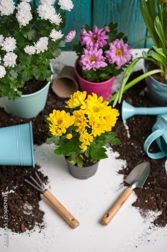 In de dag Tuin Image of soil, watering can, flower pot, shovel, rake