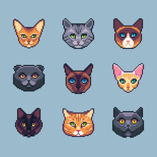 Pixel Art Vector Cat Breeds Icons Set.