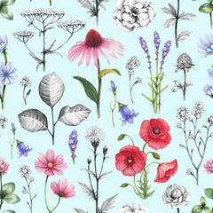 FototapetaWild flowers illustrations. Seamless pattern