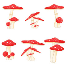 Illustration Of Different Mushrooms Amanita Of Different Shapes. Vector Mushrooms In Cartoon Style. Isolated On White Background