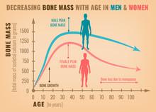 Decreasing Bone Mass
