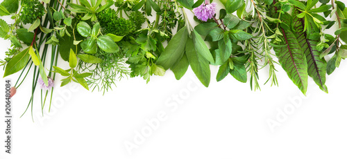 La pose en embrasure Condiment Fresh garden herbs isolated on white background