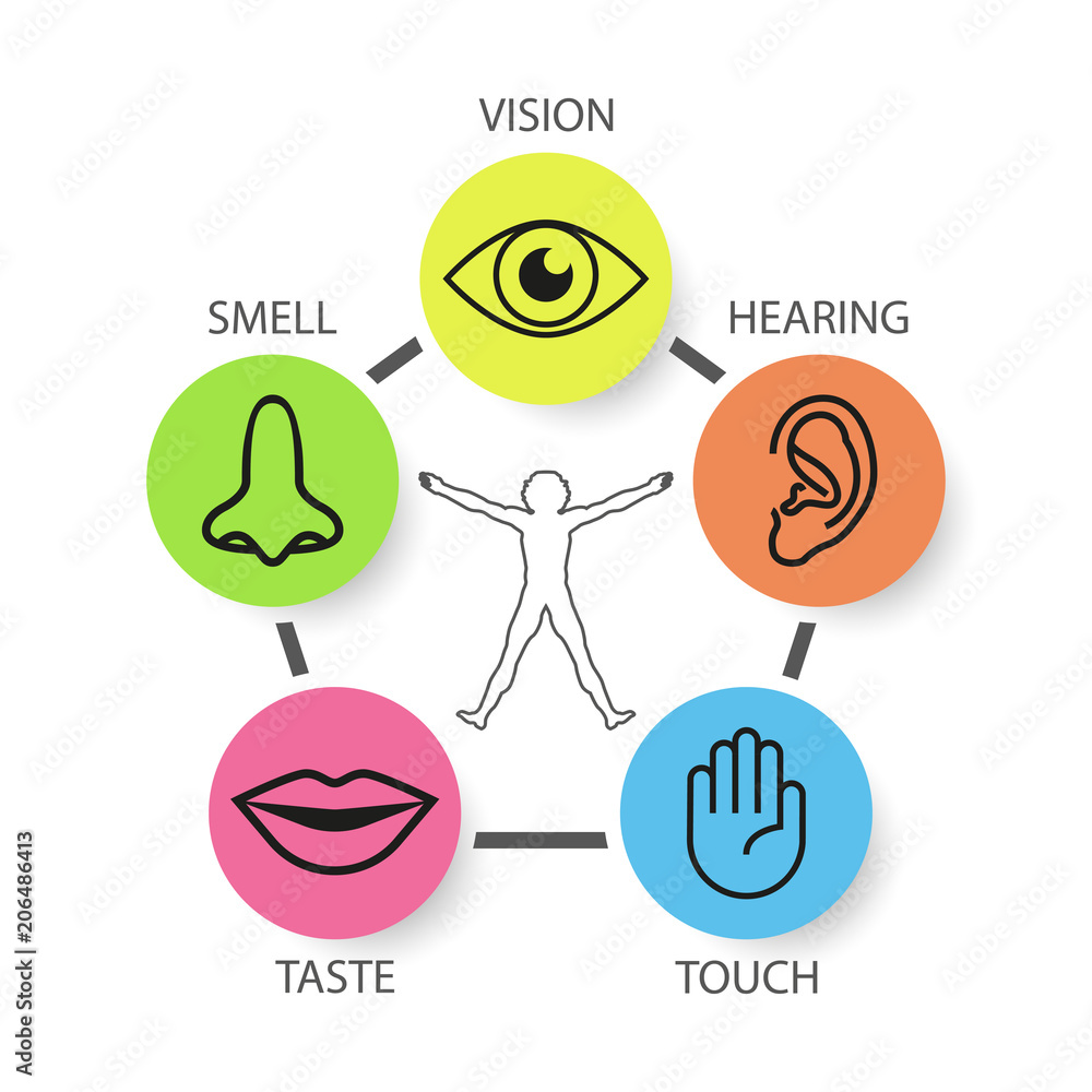 Icon Set Of Five Human Senses Vision Smell Hearing Touch Taste