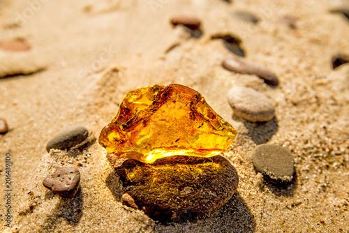 Obraz na płótnie Amber on a beach of the Baltic Sea