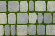 Green Moss Grows Between Brick...