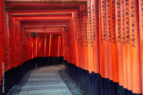 Torii Gates of Fushimi Inari-taisha in Kyoto, Japan