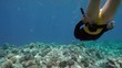 Free diver girl exploring coral reef