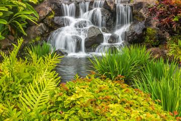 Fototapeta Wodospad Beautiful Resort Waterfall on Maui