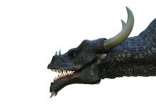 Black Dragon In A White Backgr...